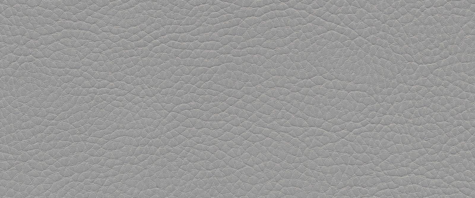 Kunstleder: Silbergrau (F6461730)