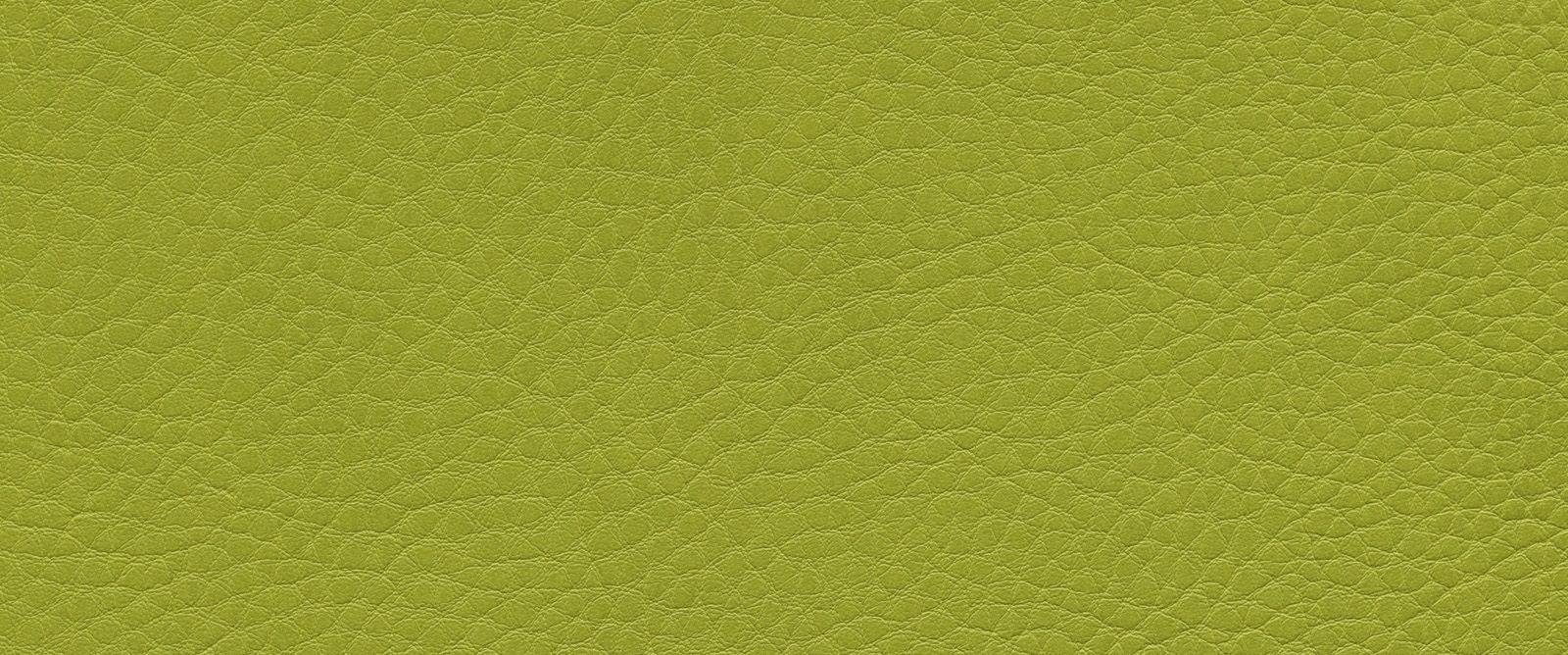Kunstleder: Limone (F6461657)